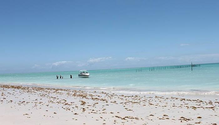 Praia de Xaréu em Maragogi