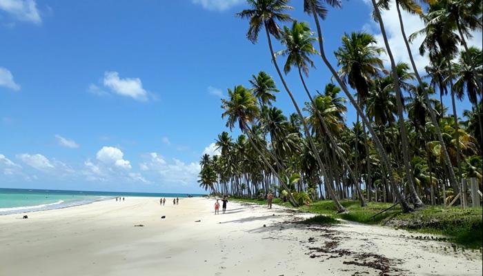 Praia dos Carneiros, em Tamandaré-AL