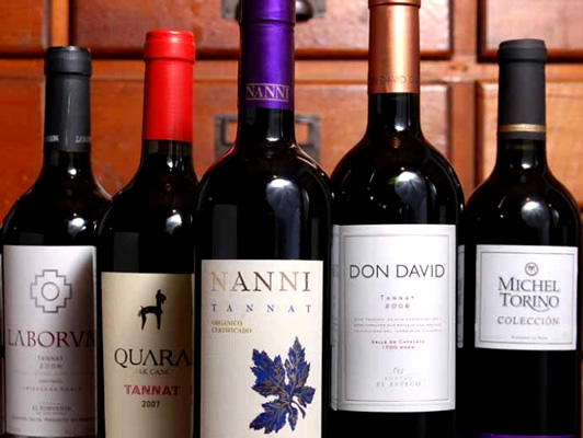 Bebidas Típicas do Uruguai: Vinhos Tannat