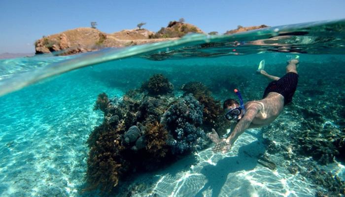O que fazer em Tuvalu: Snorkeling