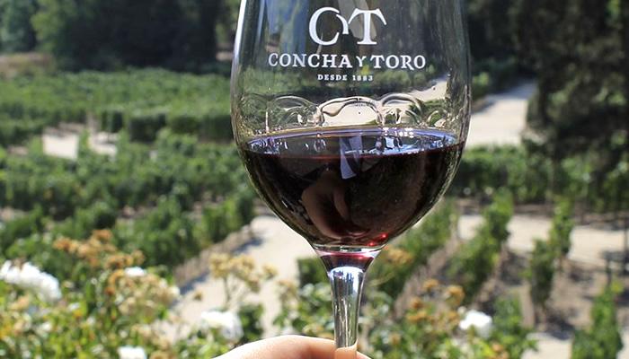Bebidas Típicas do Chile: Vinho chileno Concha y Toro