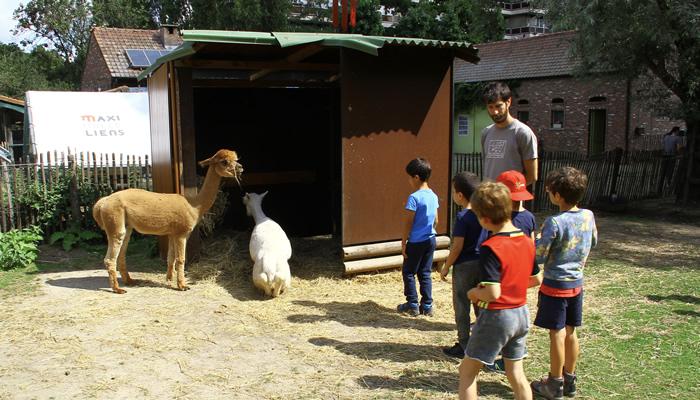 Visite uma fazenda urbana