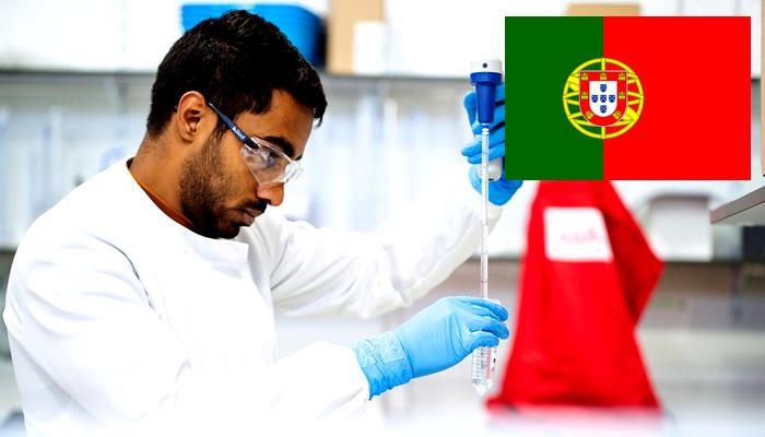 Quanto Ganha um Biomédico em Portugal?