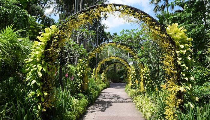 Visitar o Jardim Botânico e o Parque Fort Canning