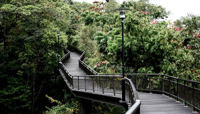 Caminhar pelas trilhas de Southern Ridges