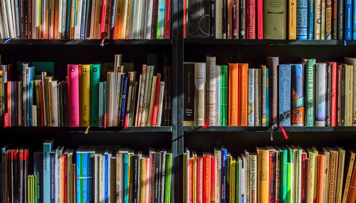 Visite uma biblioteca virtual