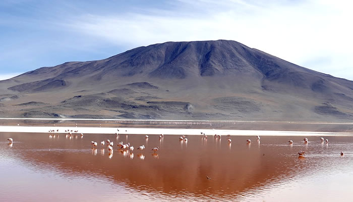 Meditação na Laguna Colorada